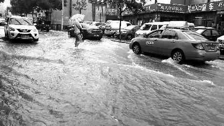 榆林多地暴雨 榆阳2205人受灾神木万亩农田被淹